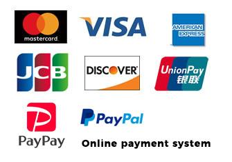 VISA Master Card JCB AmexB